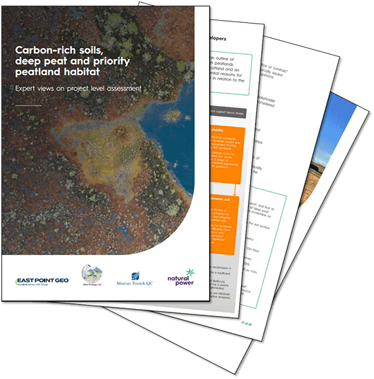 EPG co-authors new discussion paper on peatlands and wind energy in Scotland